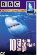 BBC: 10 самых опасных акул