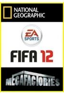 Мегазаводы. Видеоигра FIFA