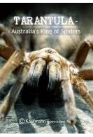 Тарантул — Австралийский король пауков