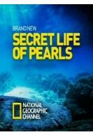 Секретная жизнь жемчужин