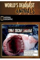 Самые опасные животные. Морской мир