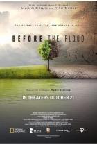 До потопа