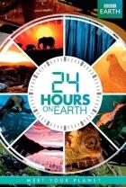 24 часа на Земле