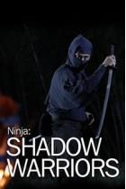 История: Ниндзя. Воины-тени